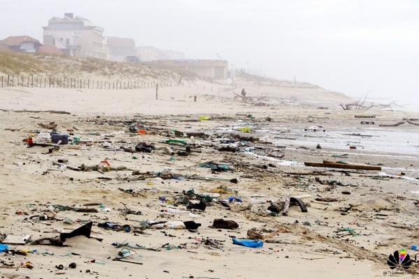 Nettoyage de plage - Dimanche 14h - Plage du Lion - © Djé - 1 moment 1 image