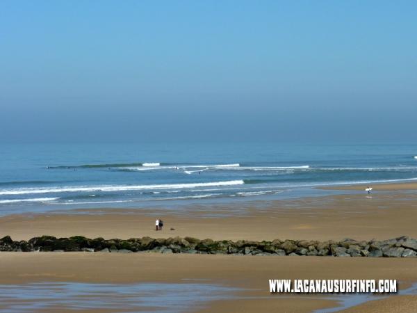 Formation et types de bancs de sable à Lacanau