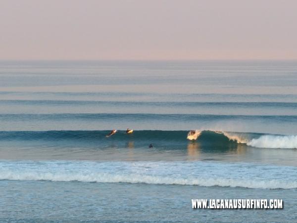 Bilan Surf Septembre 2013