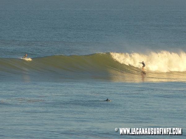 Bilan Surf Septembre 2014