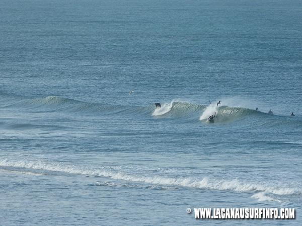 Bilan Surf Novembre 2014