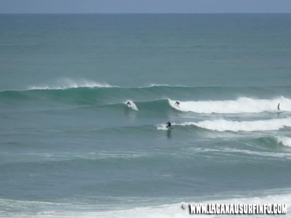 Bilan Surf Août 2015