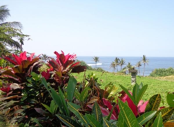 TDMS #3 : la côte ouest de Bali
