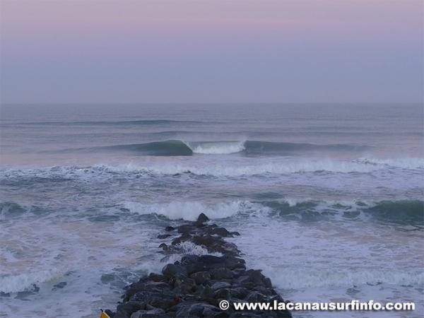 Bilan Surf Février 2019