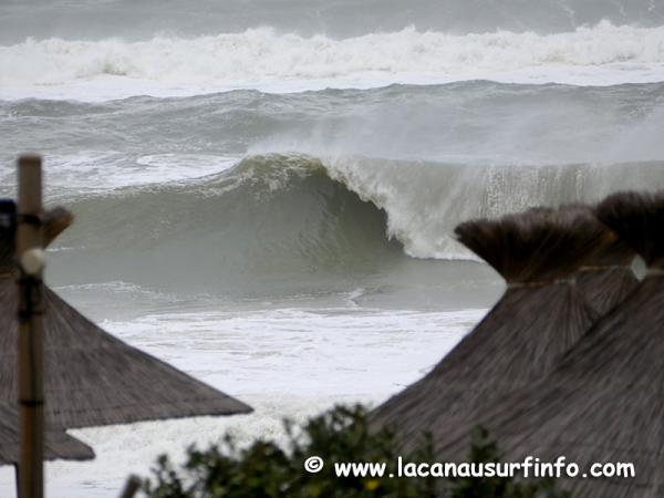 Bilan Surf Janvier 2020
