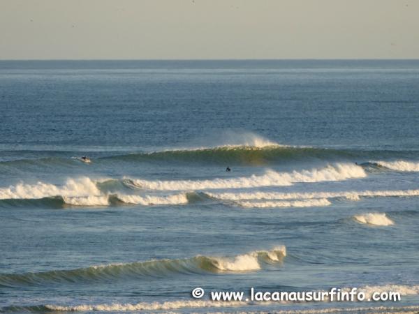 Bilan Surf Juillet 2020