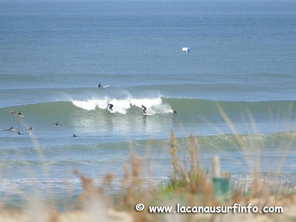Bilan Surf Septembre 2020