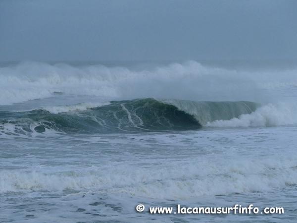 Bilan Surf Décembre 2020