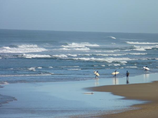 MEILLEURS VOEUX 2011 - BEACH IS GOOD