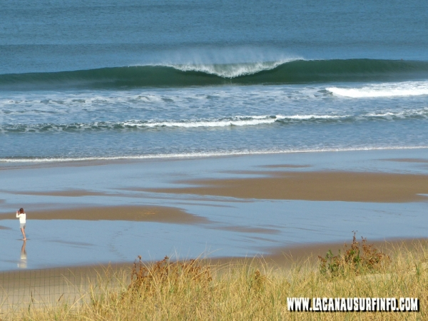 surf report lacanau