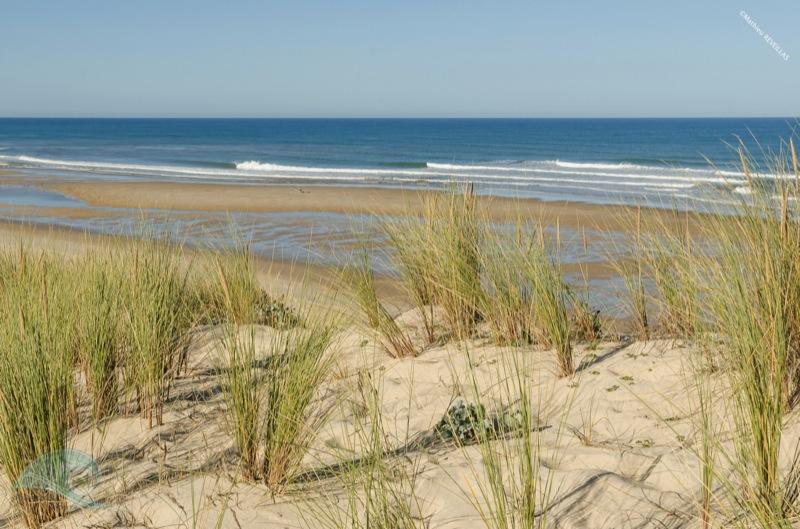 dune blanche natura glisse mathieu reveillas