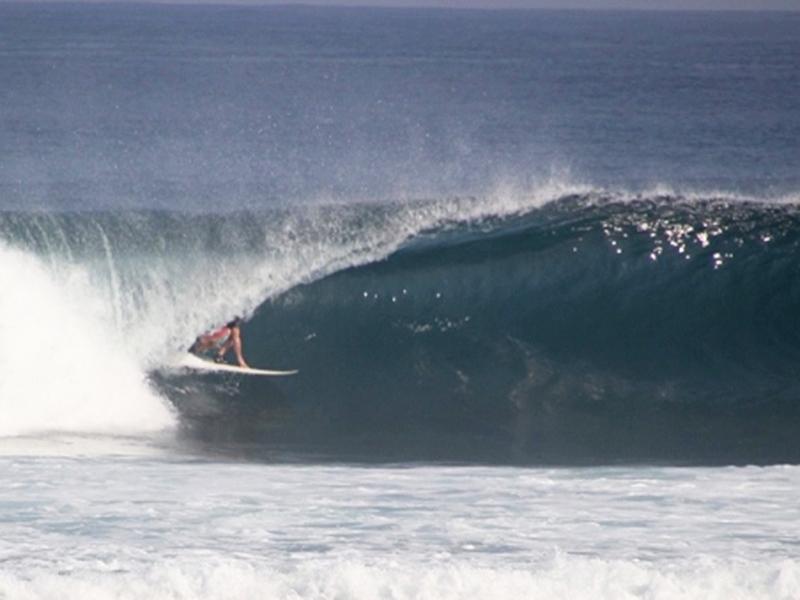 family-losmen surf camp